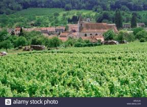 cotes-de-toul-vineyards-village-of-lucey-meurthe-et-moselle-lorraine-ARJXJX